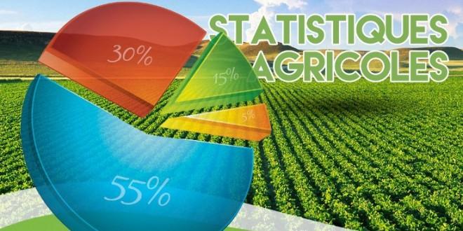 statistiques agricoles