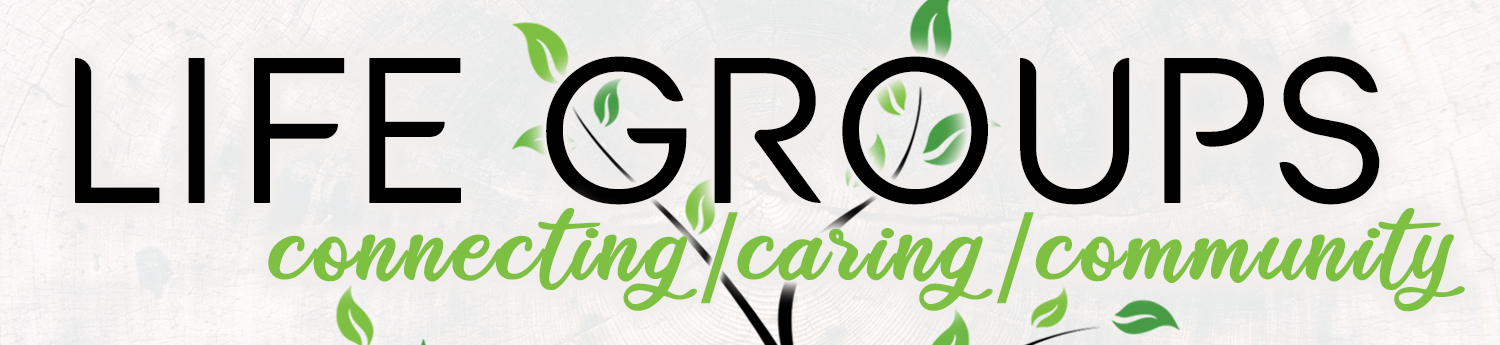 Life Groups logo web banner