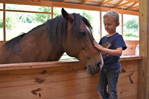 Andrew and Finn- Rosemary Farm