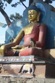 Monkey at Swayambhunath