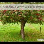 The Truth About Why We Crave Perfection