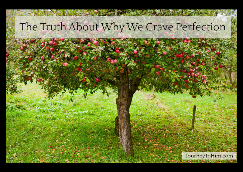 Why We Crave Perfection