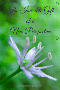 The Invisible Gift of a New Perspective