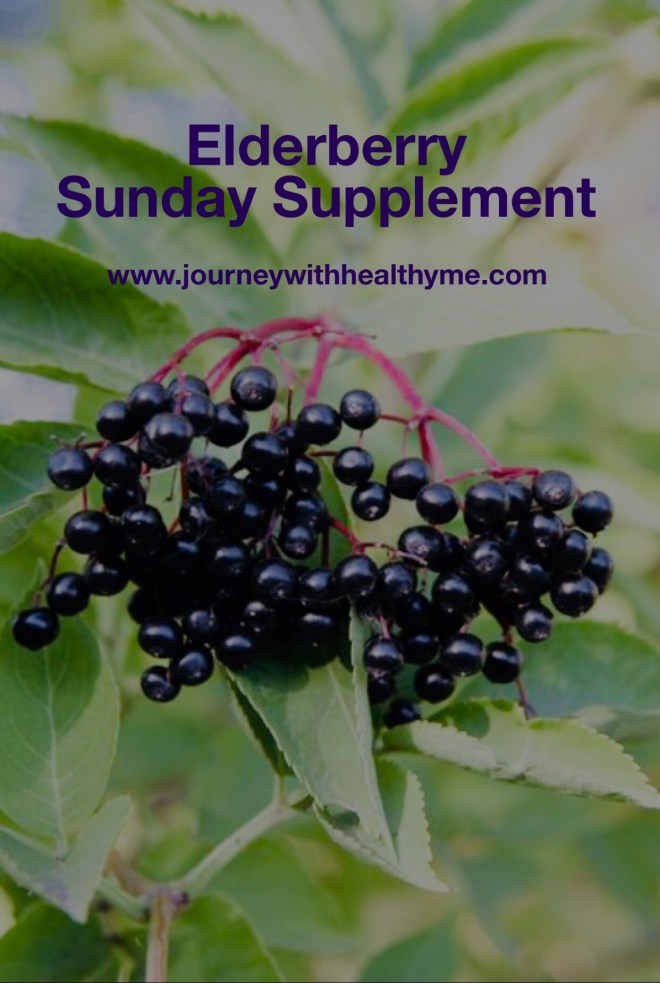 Sunday Supplement Elderberry