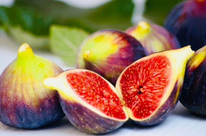 Figs the Sacred Fruit