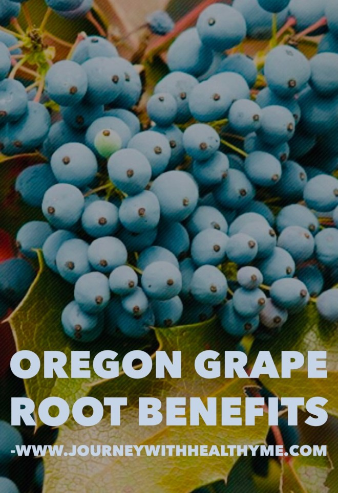 Oregon Grape Root Benefits