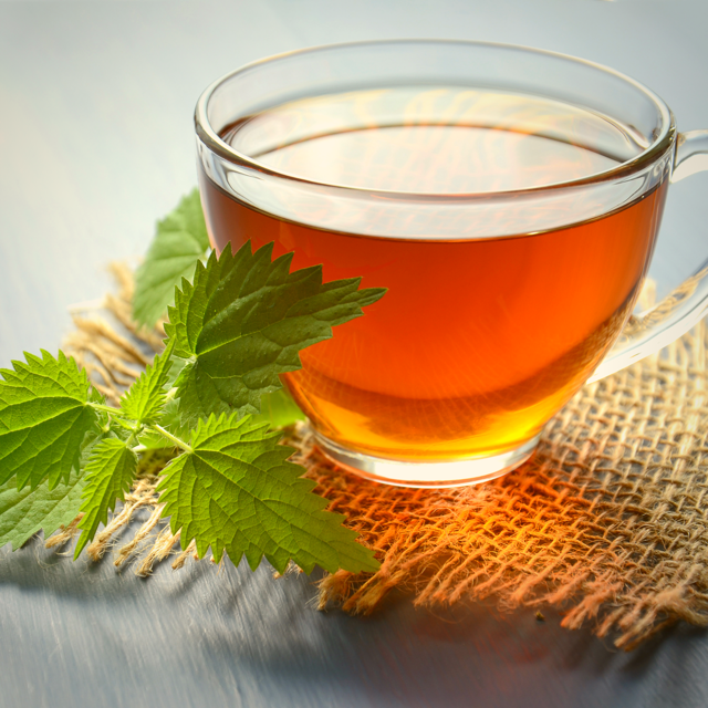 Seven Herbal Teas that Nourish Skin Mint