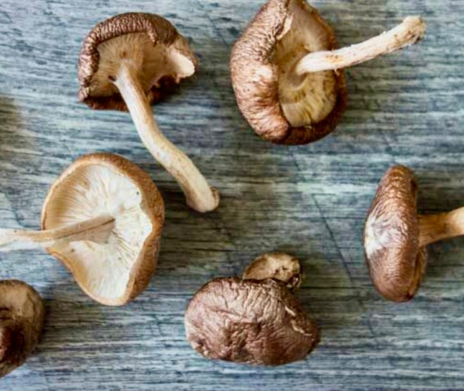 Seven Superfood Mushrooms shiitake