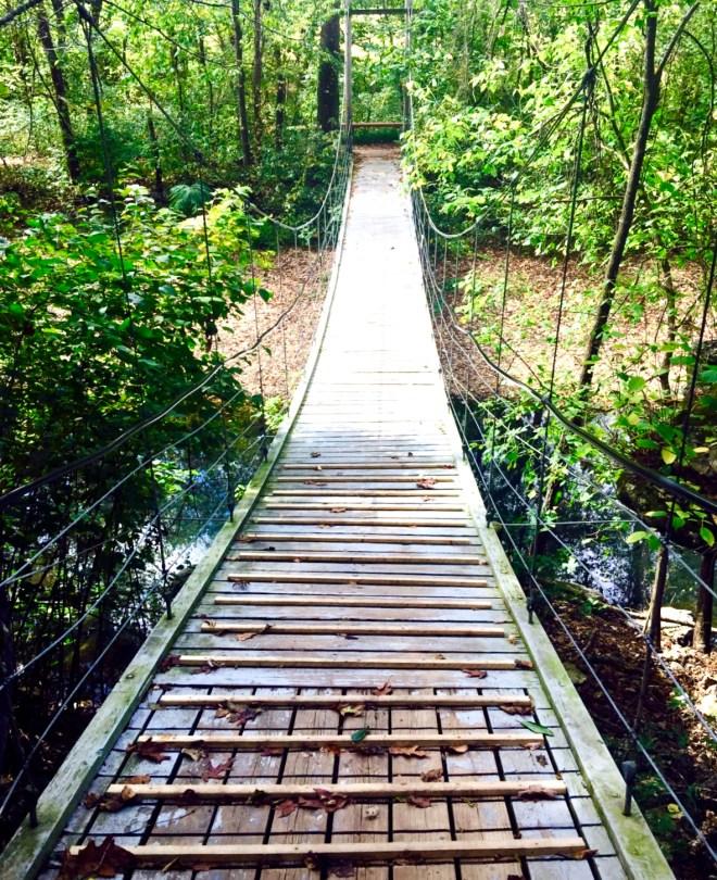 Summer Health Tips hiking