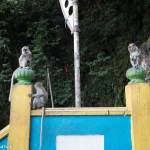 Watch out for the monkeys, Batu Caves, Malaysia