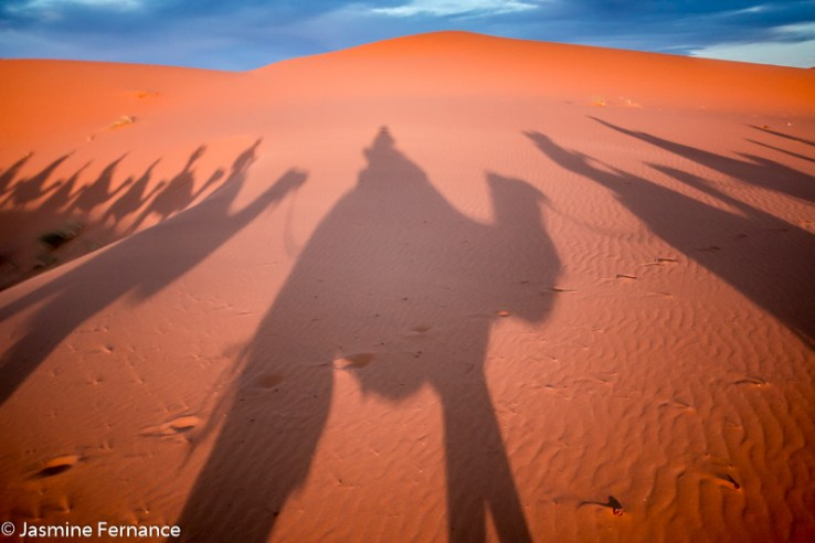 Camel riding shadows in the Moroccan Sahara