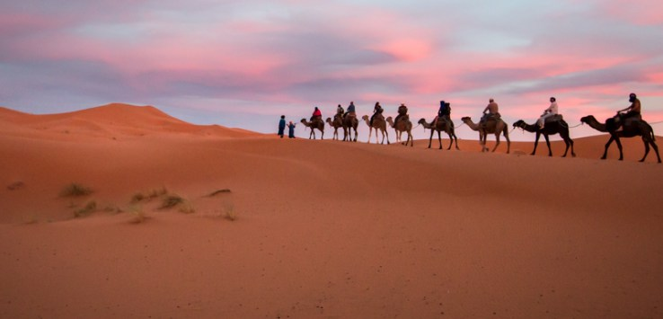 Camel riding in the Moroccan Sahara