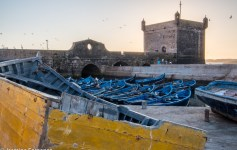 Essaouria fishing port