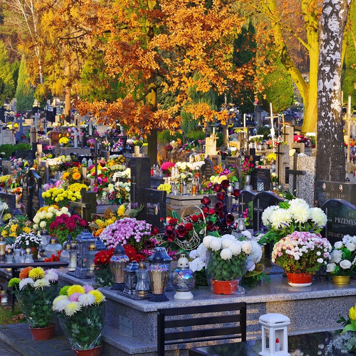 day of the dead graveyard