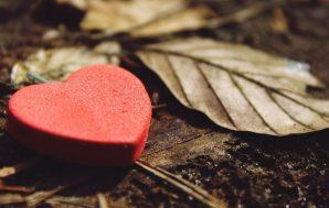 Hablemos sobre lo que es el amor real