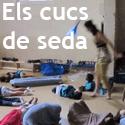 tile_cucsdeseda