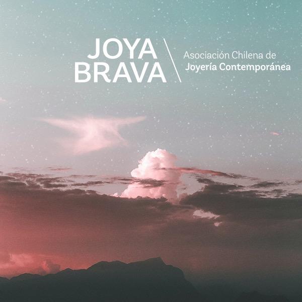 Sostener la incertidumbre, expo de Joya Brava en La Bienal