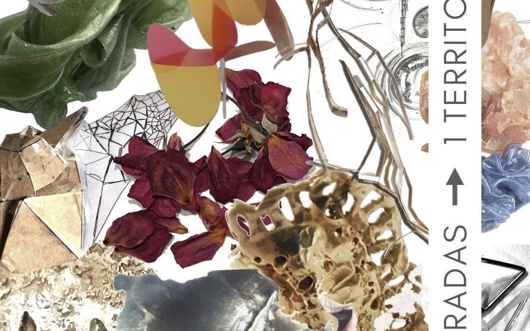 Bienal: Hoy inaugura «7 miradas, 1 territorio», del taller de Patricia Gallucci.