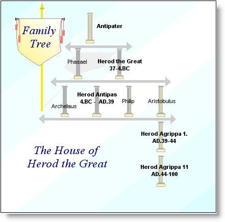 Herod's Family Tree