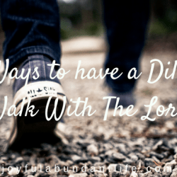 Is Your Walk with the Lord a Diligent Walk? Six Ways to have a Diligent Walk With The Lord