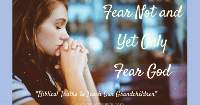 Fear Not And Yet Only Fear the Lord - Instilling Biblical Truths Into My Grandchildren