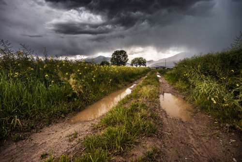 field after storm