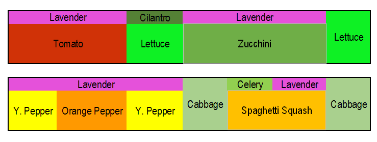 Vegetable Garden Map