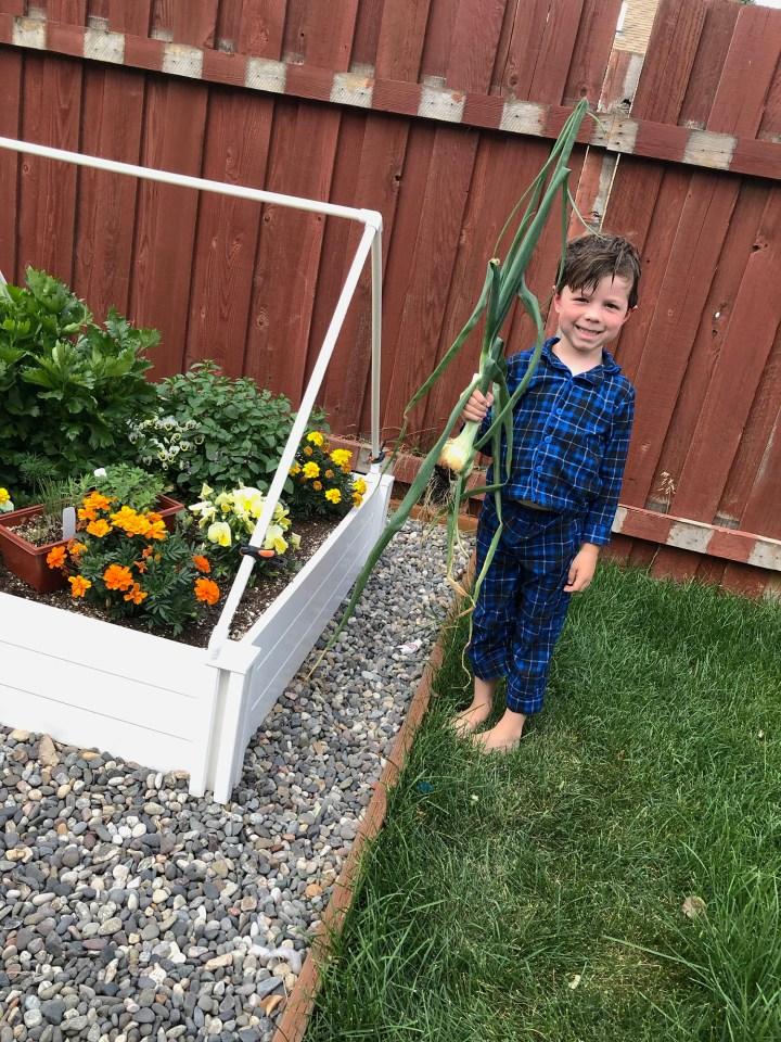 Kids love veggies they've grown!
