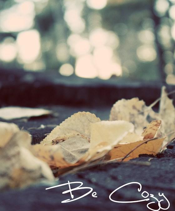 Be Cozy by Kimberly Creagan