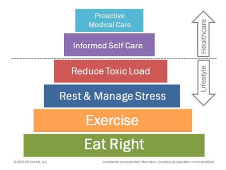 Doterra Wellness Diagram