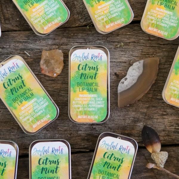 Joyful Roots Free Botanical Lip Balm Citrus Mint Herbal Skincare and Wellness