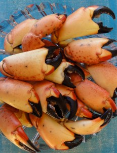It's time for some Florida sStone Crab Claw