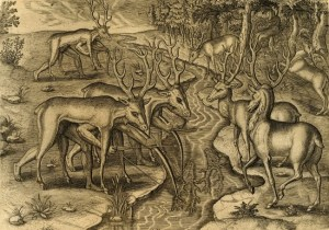 Hunting deer in disguise; notice the legs of the hunters under the deer on the left side.