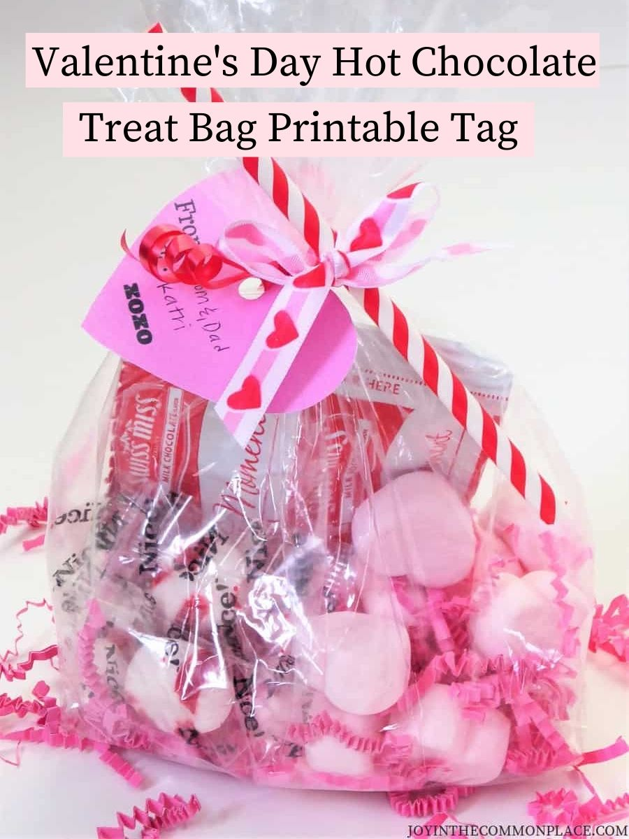 Valentine's Day Hot Chocolate Treat Bag Gift Tag