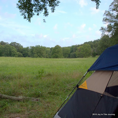 tent in a pasture