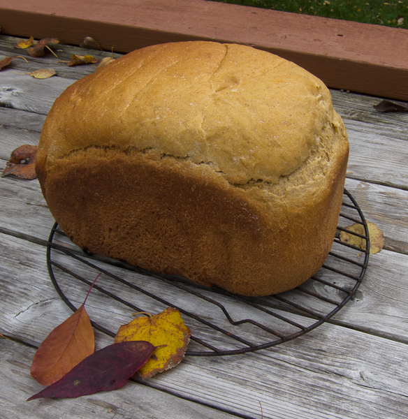 photo of Pumpkin / Winter Squash Yeast Bread made in the Bread Machine