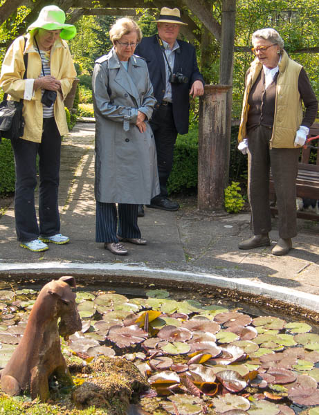 Photo of people looking at wire fox terrier on water feature.