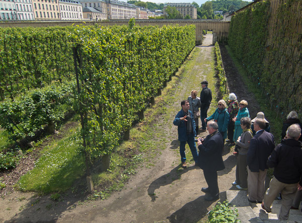 photo of potager, director, and espaliered trees