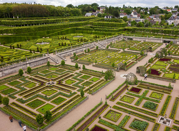 Photo of potager at Villandry