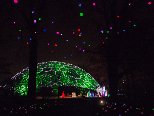 The Climatron at the Missouri Botanical Garden, lit up for Garden Glow with Christmas lights