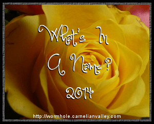 logo for What's In a Name Challenge 2014