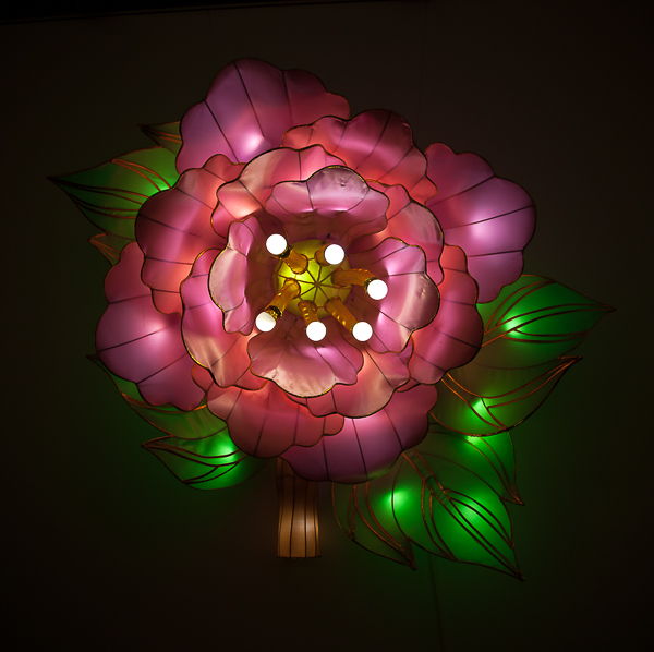 Pink peony lantern