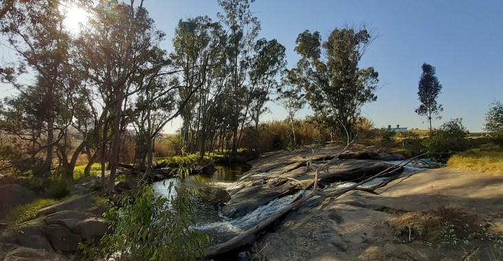 modderfontein nature reserve spruit trail