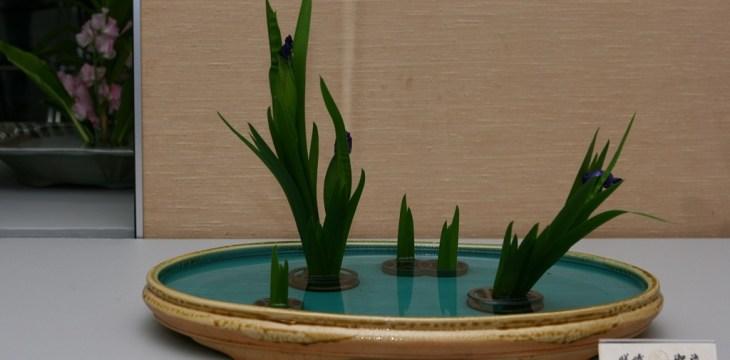 Японцы и чувство прекрасного: размышления о будущем искусства икебана