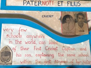 Paternott