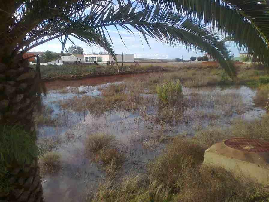 rain in fuerteventura