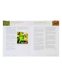 Essential Oils Complete Reference Guide - Sunburn Relief