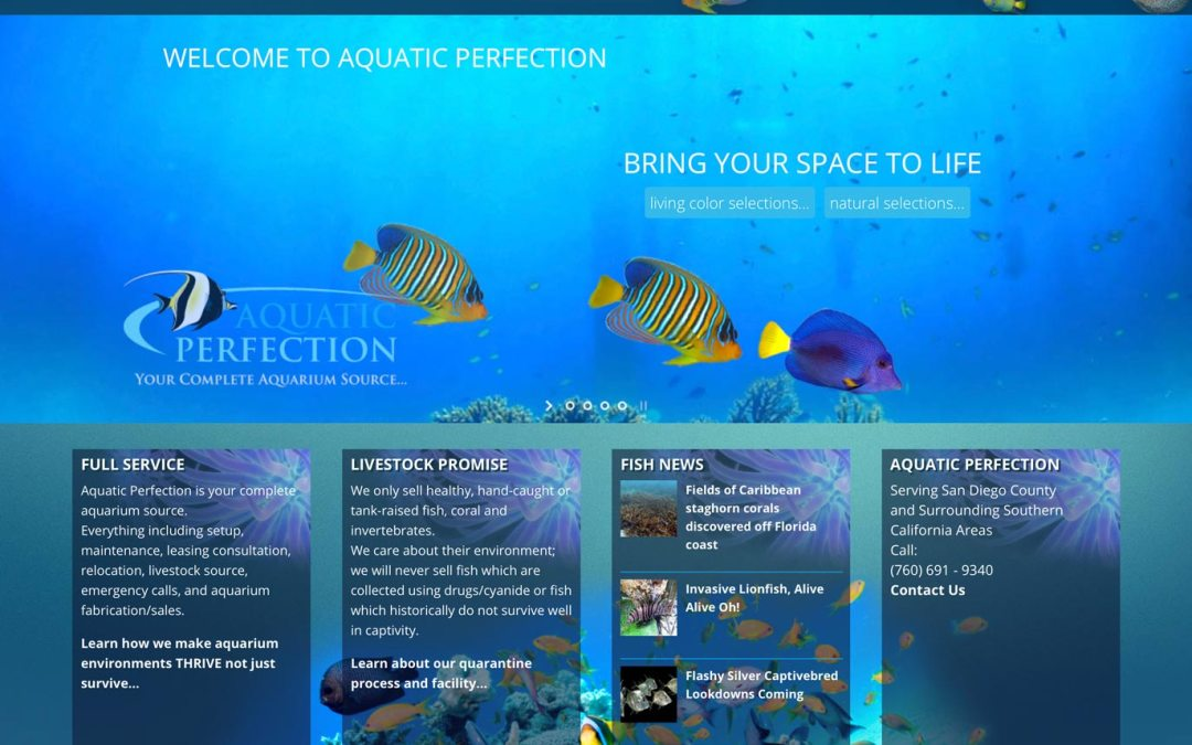 Redesign/Rebuild Aquatic Perfection