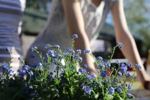 Gardening - One of the best ways to meet your neighbors.