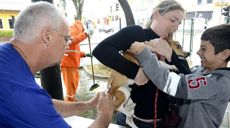 Começa a vacinação de cães e gatos em Jundiaí